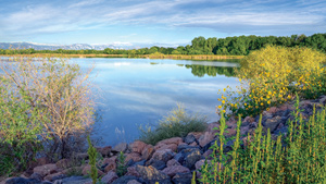 Toll Brothers - The Preserve at McKay Shores Photo
