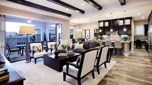 Toll Brothers - Montecito Photo