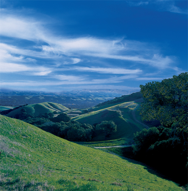 Norris Canyon is nestled within a landscape of rolling hills and Coastal Oaks.