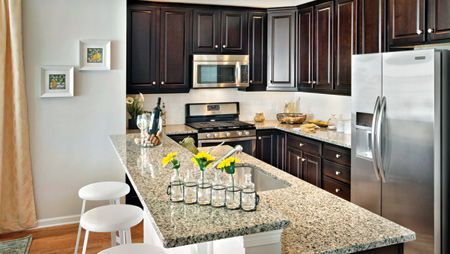 Click to visit the Westborough Village - The Terraces Collection's page