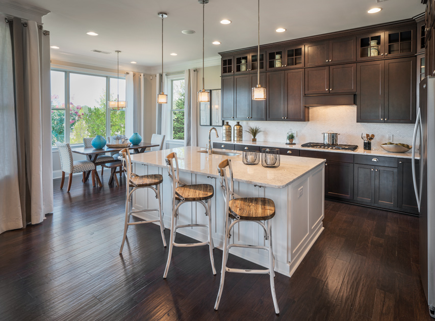 New Luxury Homes For Sale In Charlotte Nc Regency At Palisades
