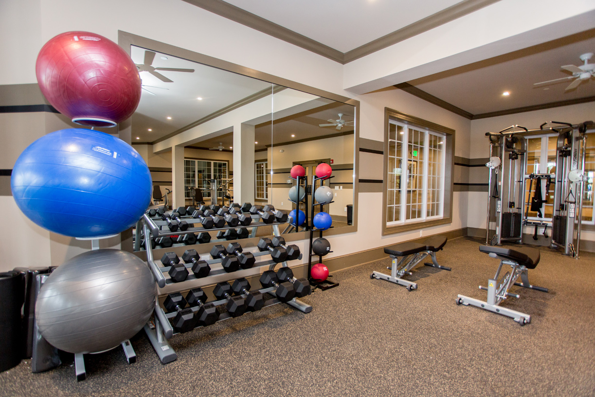 The workout room has a dedicated space for free weights and weight lifting machines