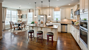 Toll Brothers - Regency at Hilltown Photo