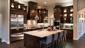 Toll Brothers - NorthGrove Springs Photo