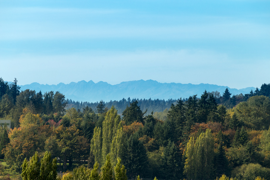Situated atop a scenic crest, Crestview offers stunning views of the Sammamish River Valley and Olympic Mountains.
