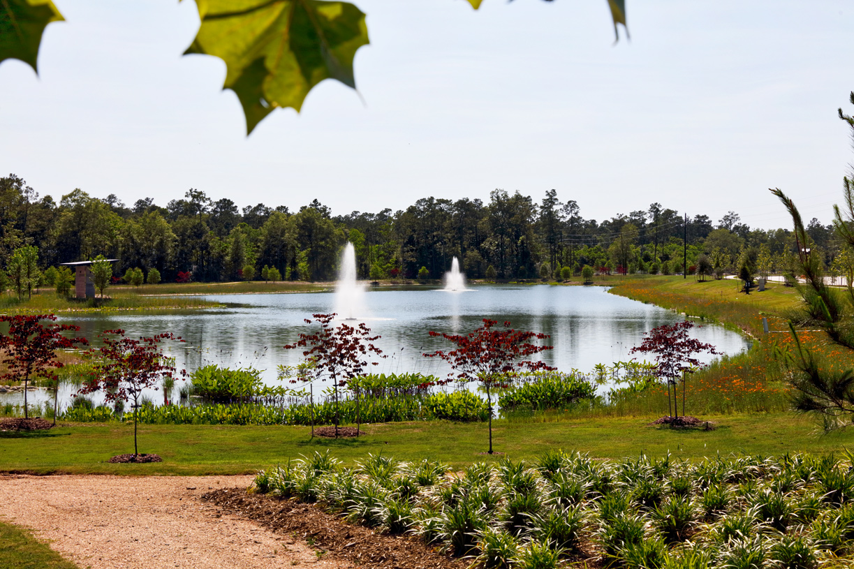 Enjoy an afternoon at one of the catch-and-release lakes