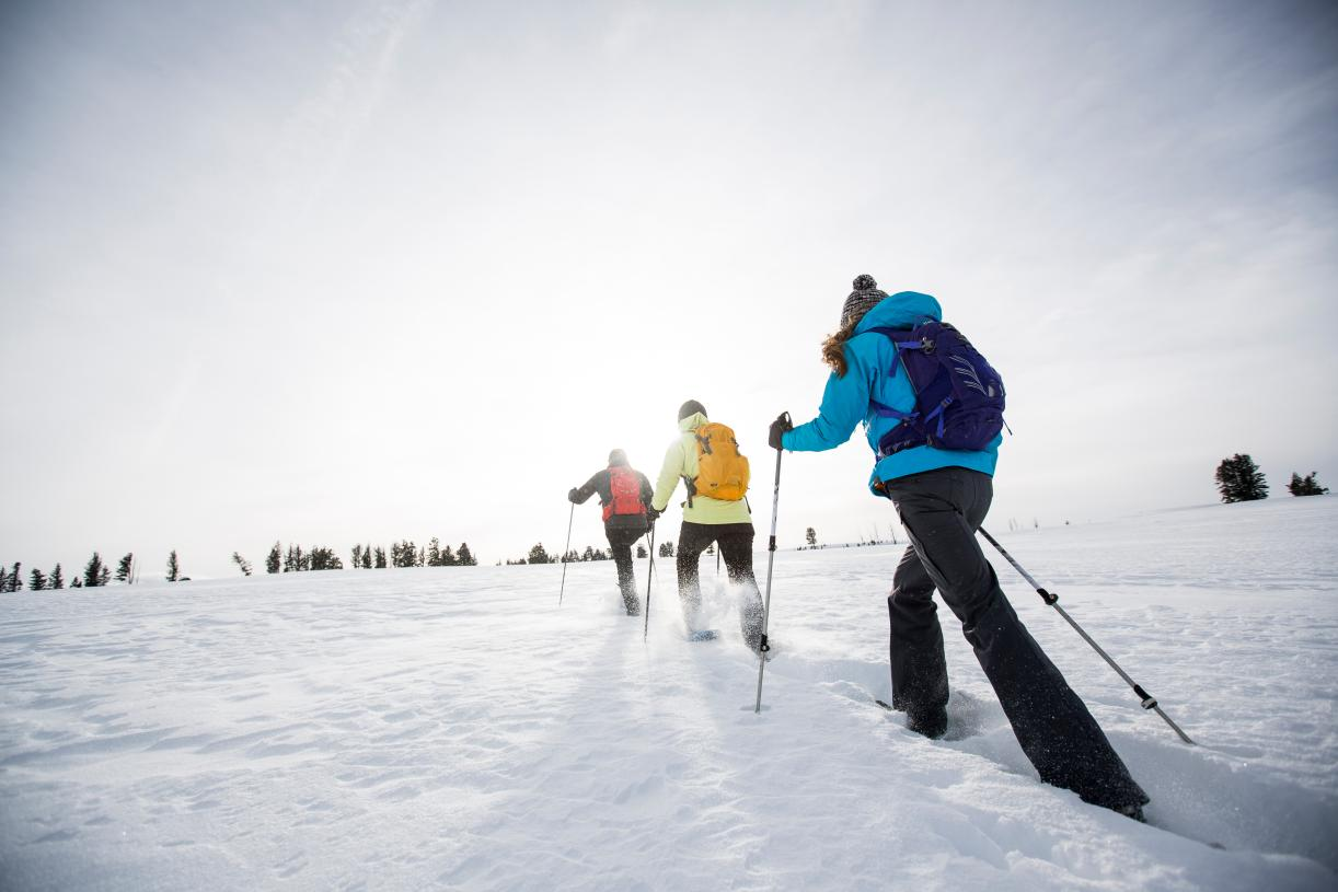 Snow shoeing in the winter