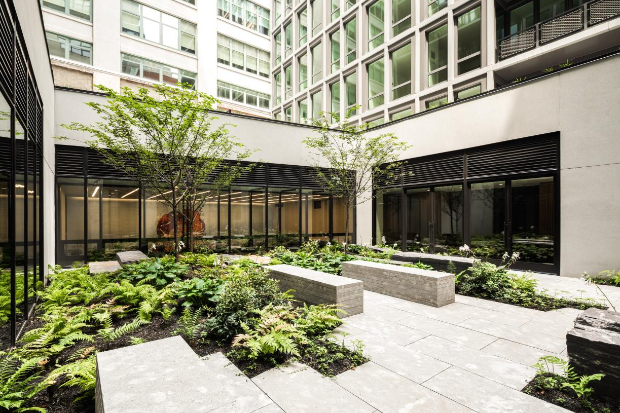 Landscaped courtyard with seating