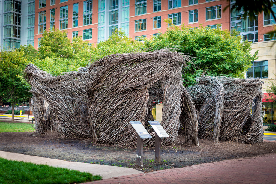"""A Bird in the Hand""-Patrick Dougherty Public Art Installation at Reston Town Square Park"
