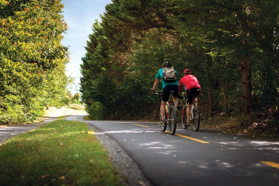 Enjoy cycling on the 45-mile long, fully paved, W&OD trail