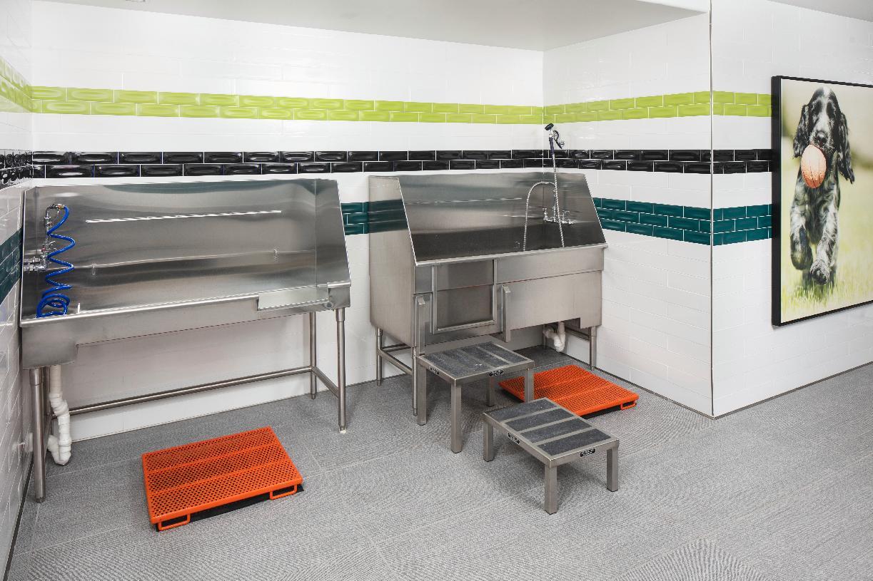 Westbourne Park dog washing station