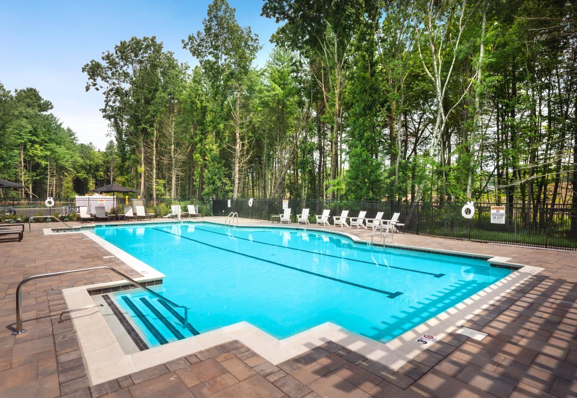 Beautiful wooded area surrounds outdoor swimming pool