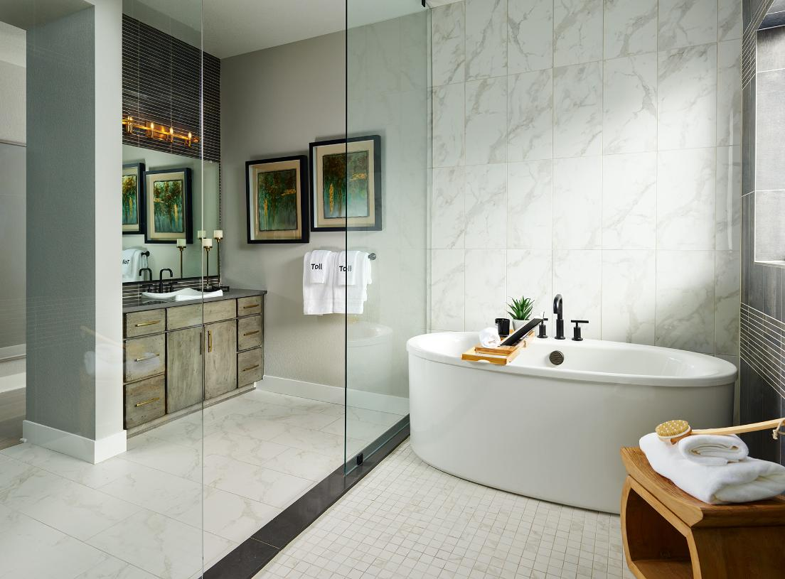 Montview primary bathroom with freestanding tub