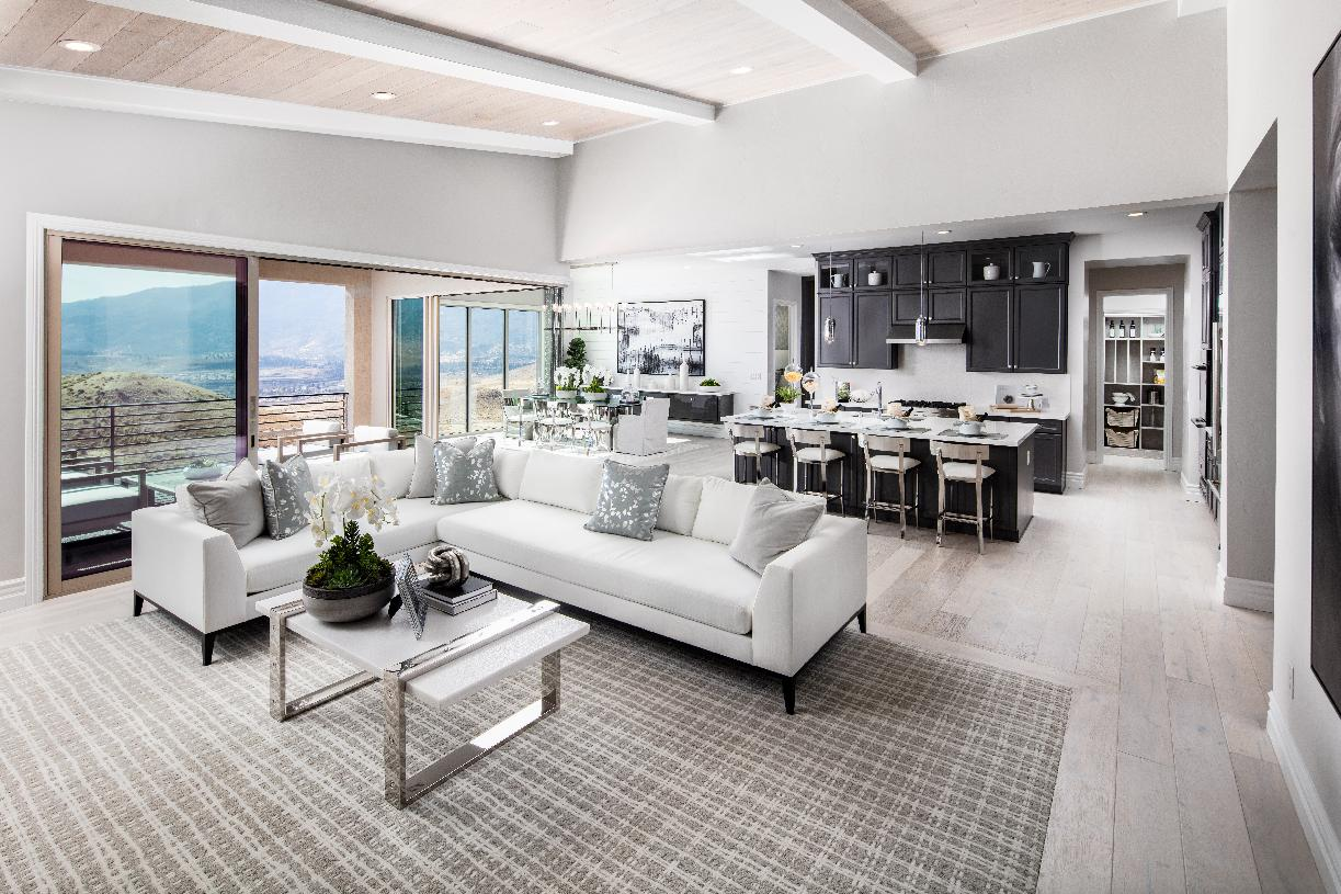 Montrose Elite living room and kitchen