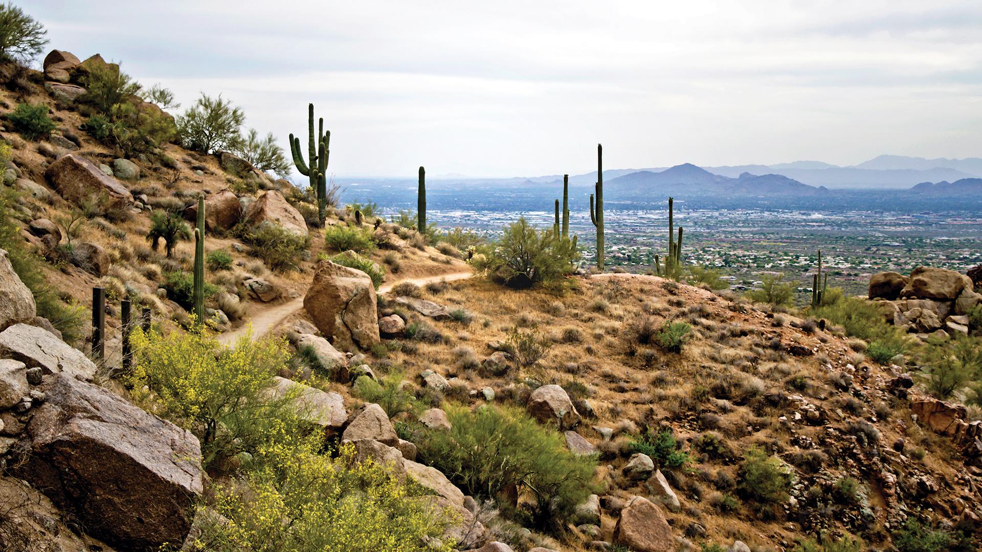 Hiking, biking and walking trails nearby