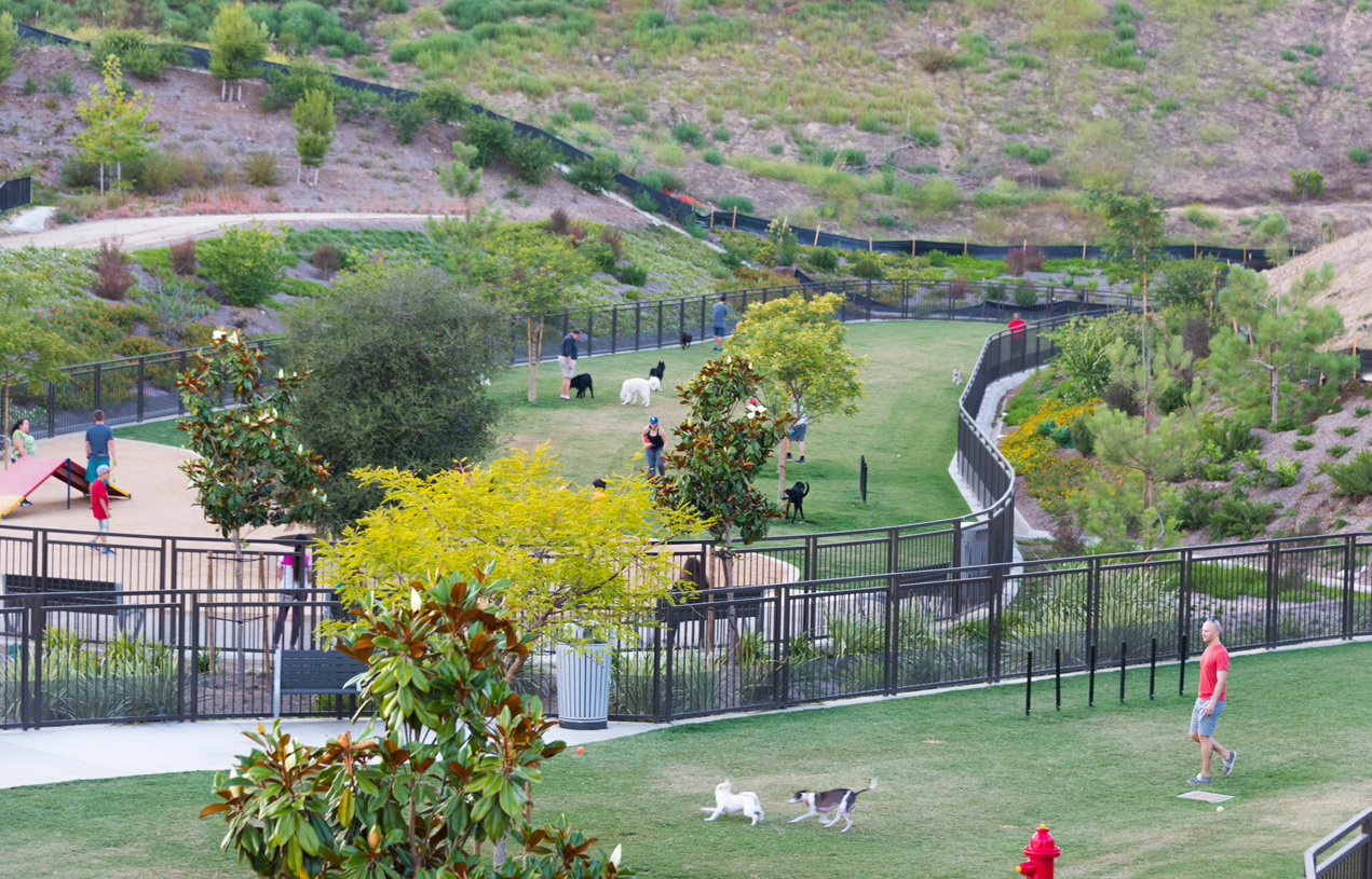 Dog park with separate small and large dog enclosures