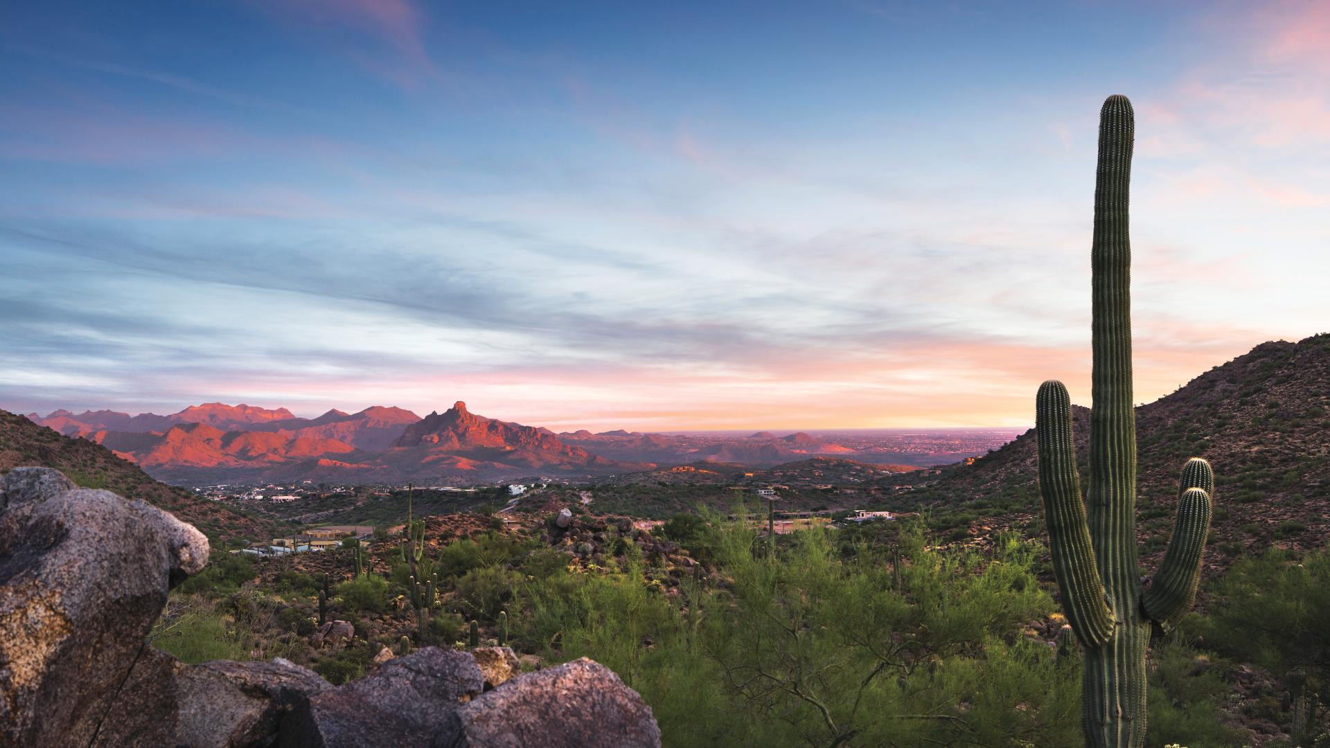 Serene Sonoran Desert setting with beautiful mountain and city light views