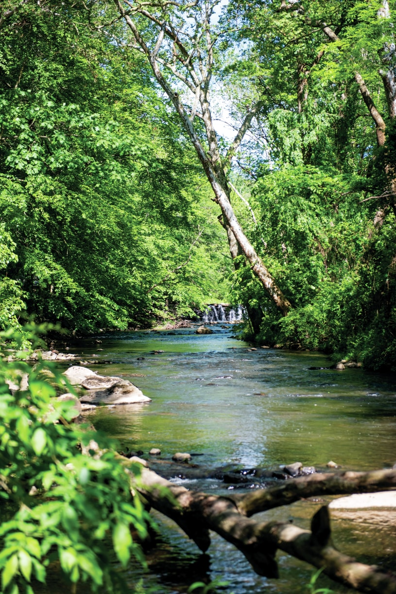 Enjoy hiking the nearby local trails