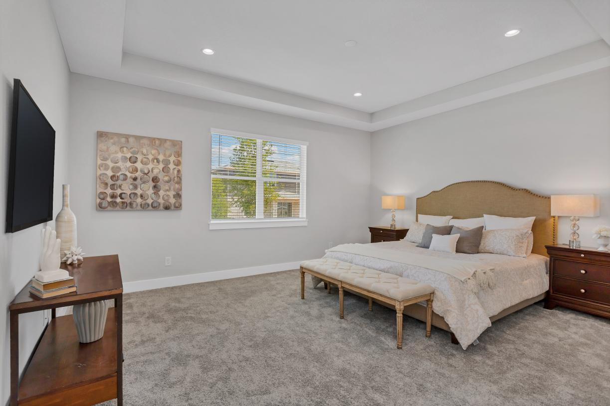 Primary bedroom suite with tray ceiling
