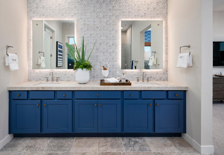Primary bathroom with dual-sink vanity and beautiful backsplash