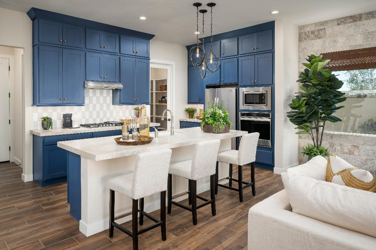 Well-appointed kitchen with blue cabinetry, patterned subway tile backsplash, stainless steel appliances, and walk-in pantry