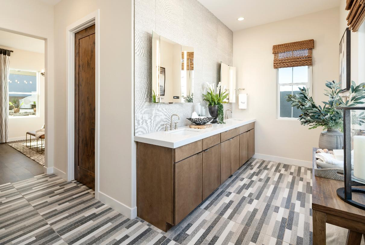 Luxurious primary bathroom with dual-sink vanity and large walk-in shower