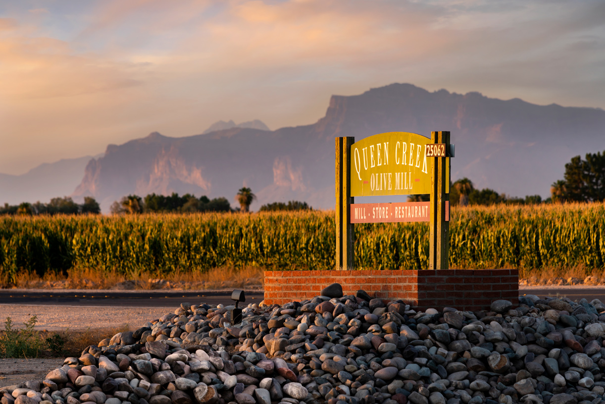Ideally located within minutes from Queen Creek Olive Mill