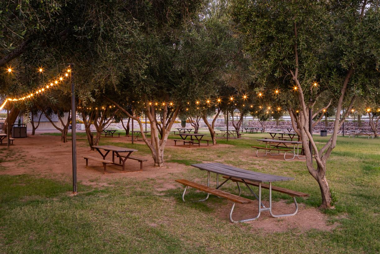 Enjoy outdoor living at Queen Creek Olive Mill