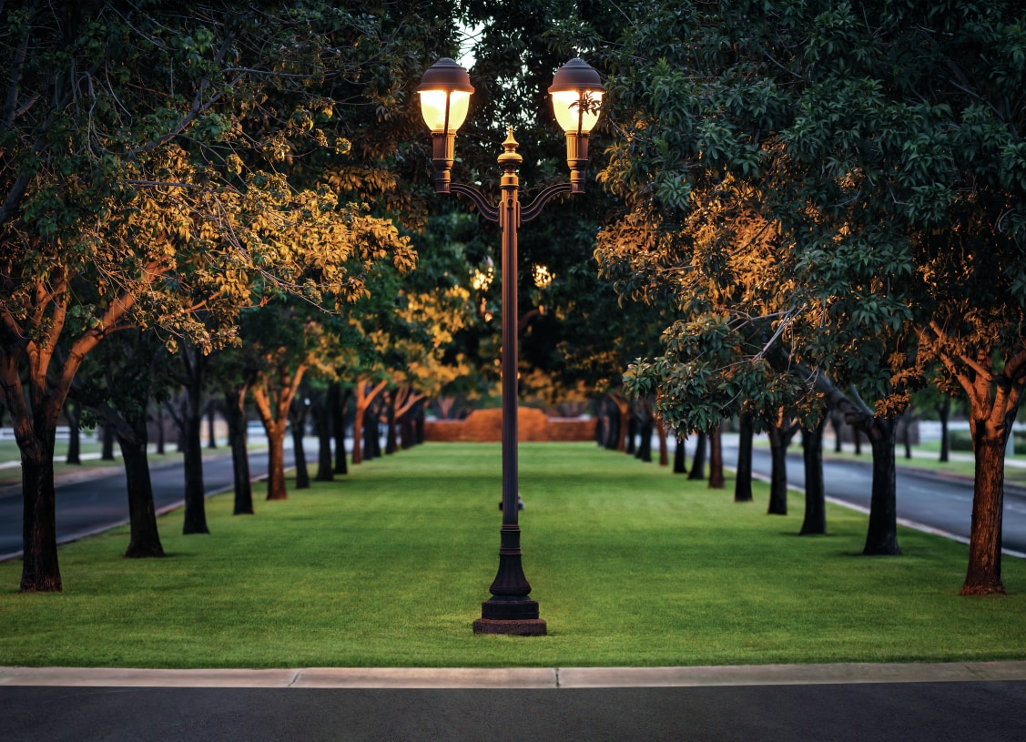 Tree-lined streets and an abundance of parks and green space