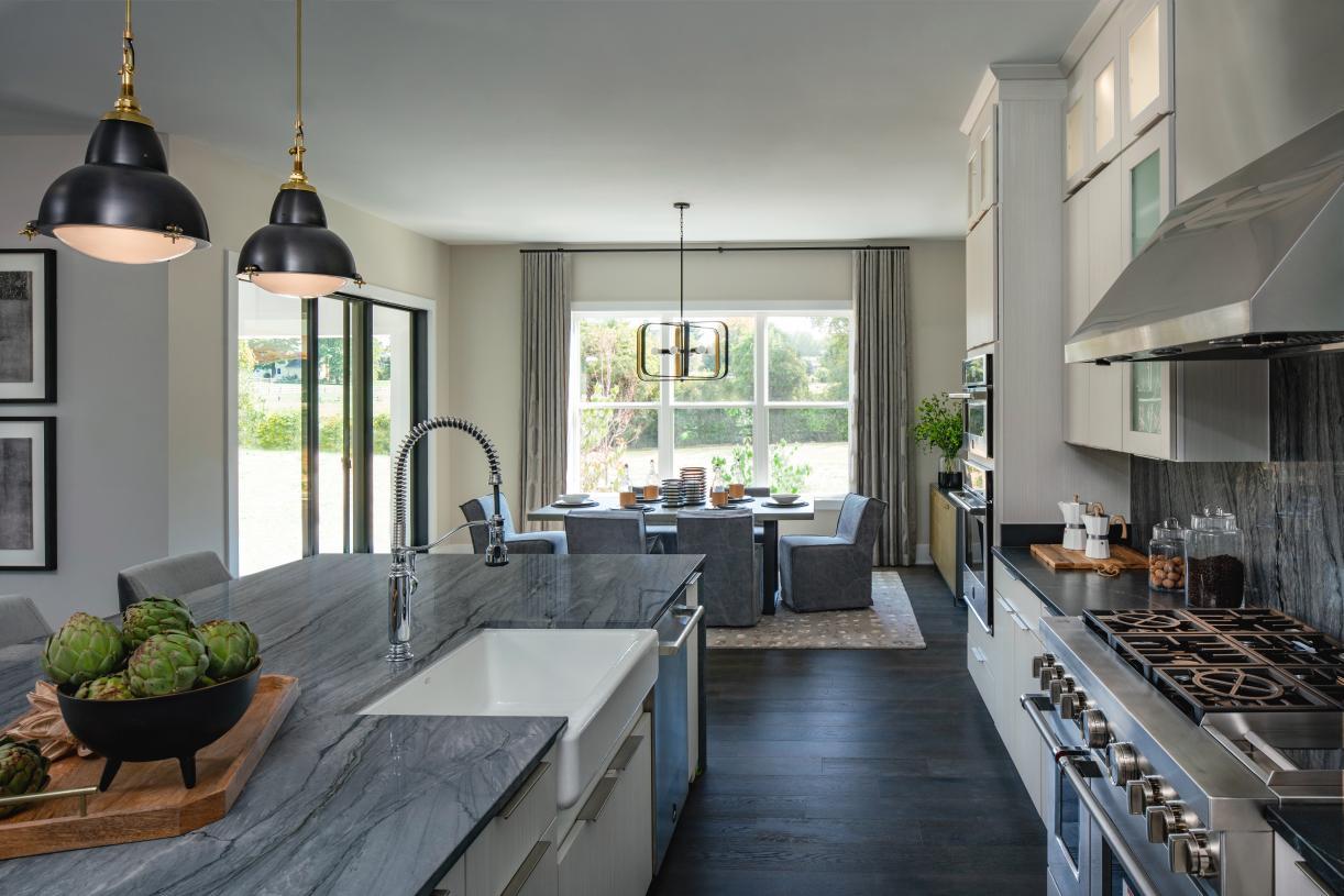 Palatine kitchen and breakfast area