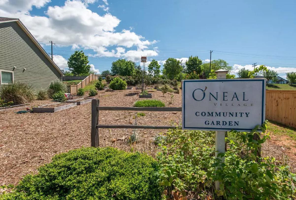 Community u-pick garden for all residents