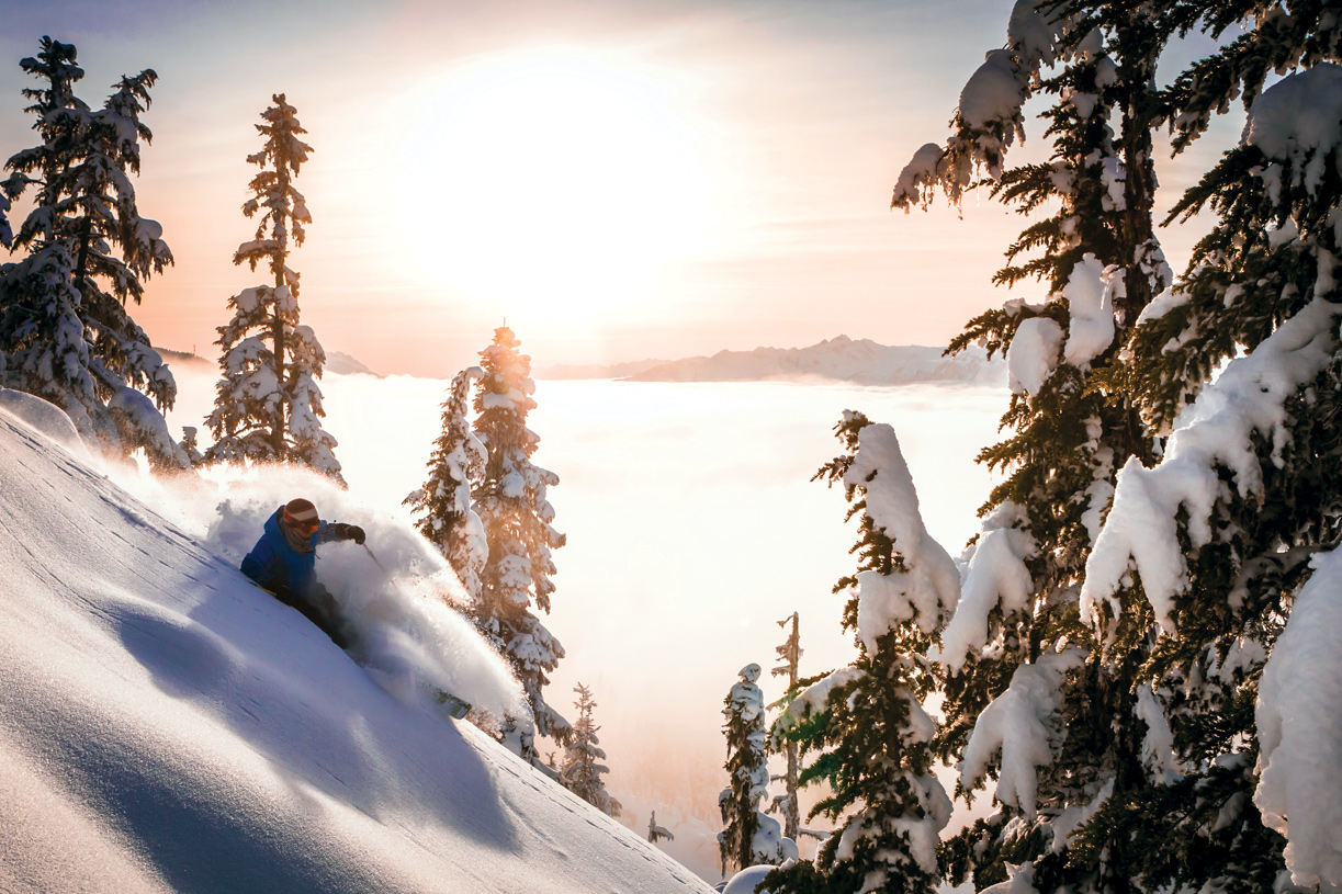 Lake Tahoe and a plethora of world-class ski resorts are a short drive from Cantaro
