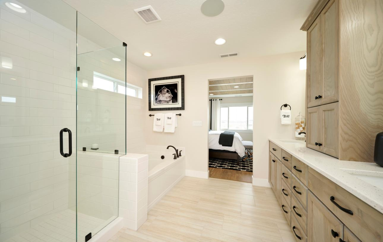 Separate tub and full tile glass walk-in shower
