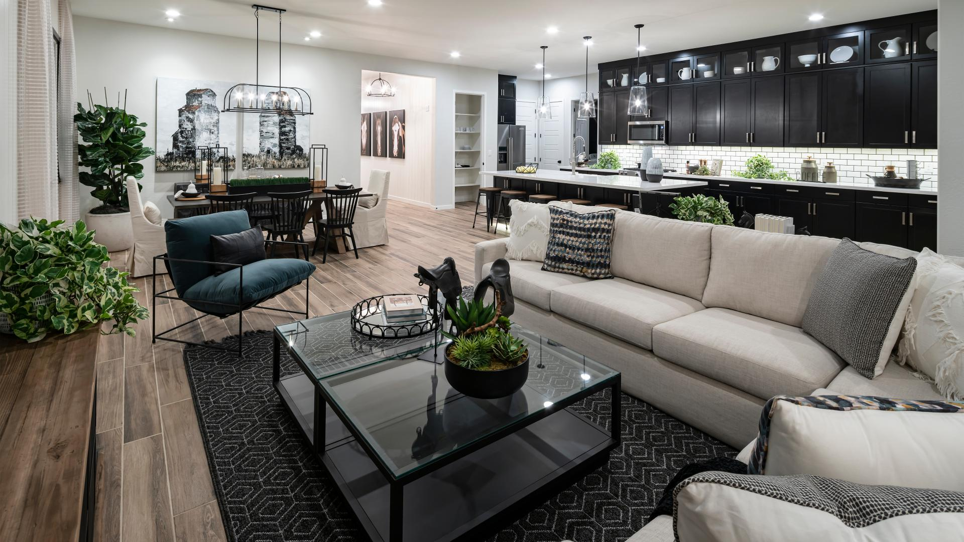 Toll Brothers at Cadence - Mosaic Collection