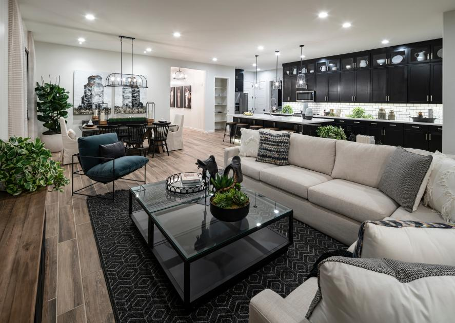 Toll Brothers - Toll Brothers at Cadence - Mosaic Collection Photo