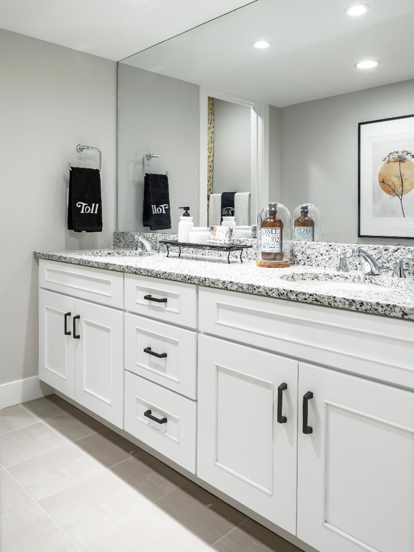 Guest bathroom with dual vanity and large shower