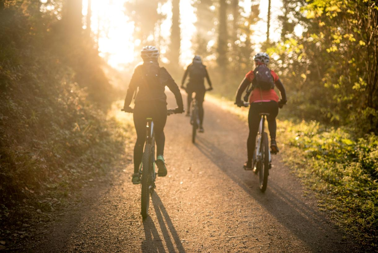 Nearby mountain biking trails and scenic routes