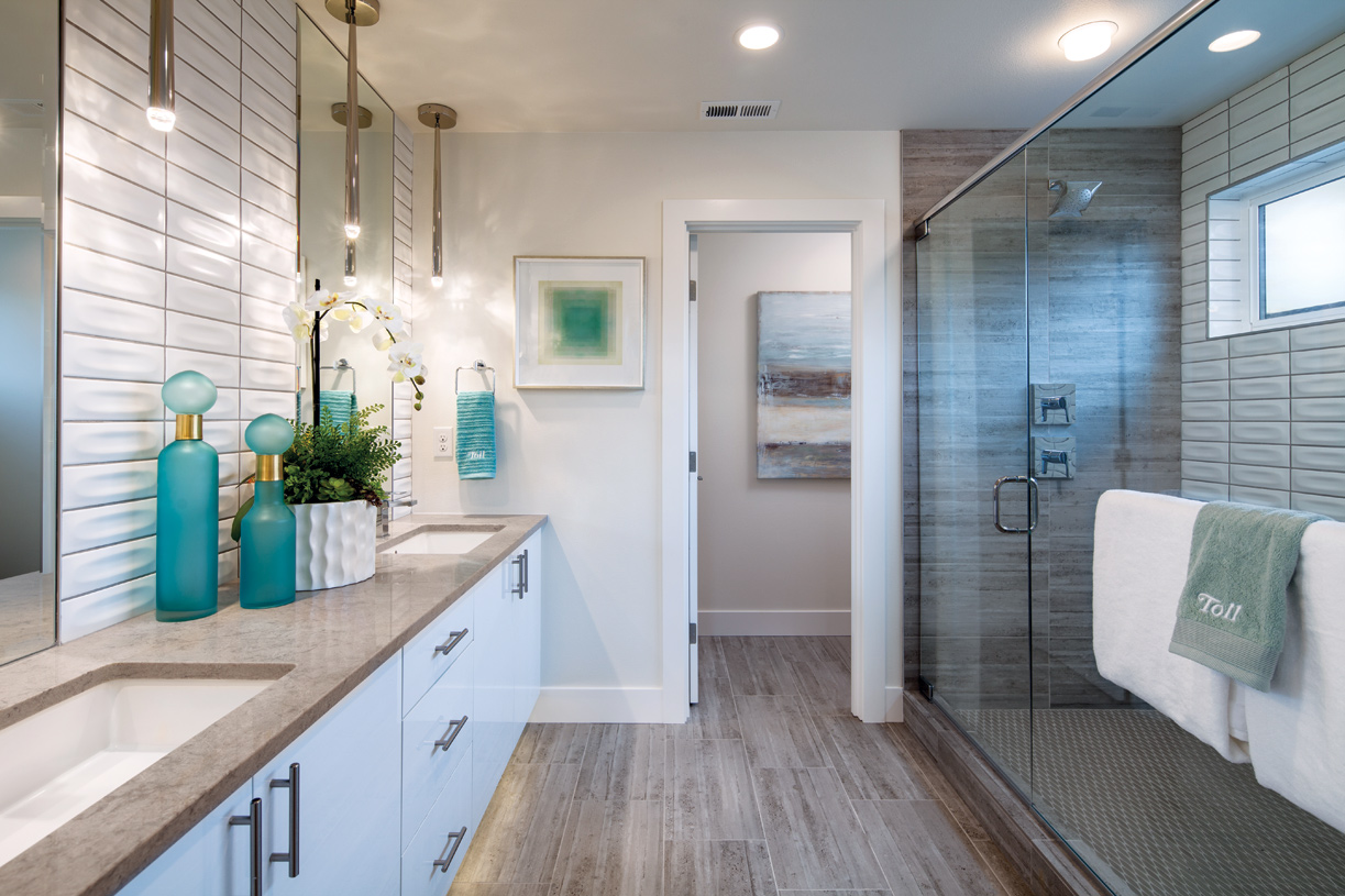 Luxe primary bath with walk-in shower and separate water closet
