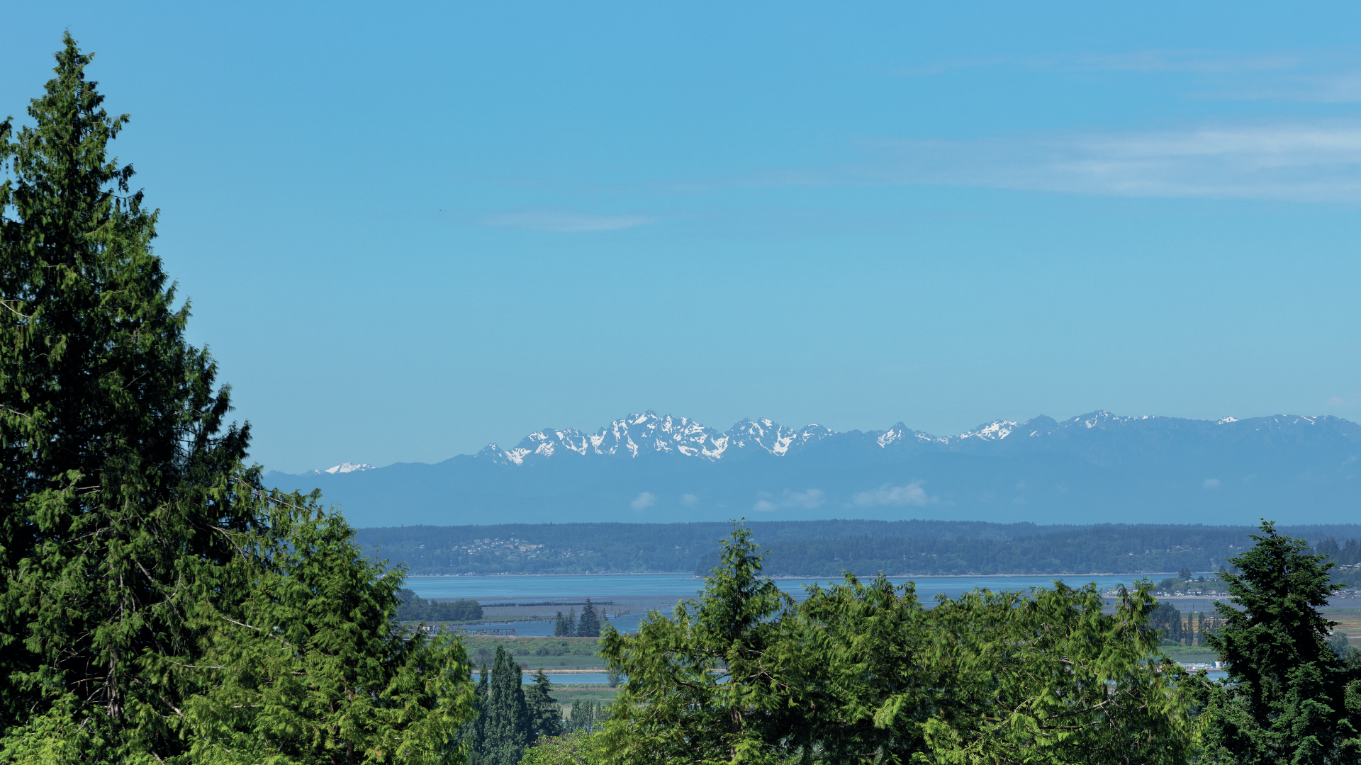 Lovely views of the Olympic Mountains and Puget Sound