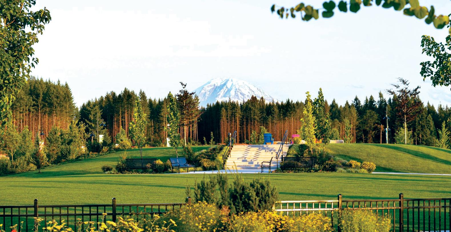 The Village Green and Mount Rainer