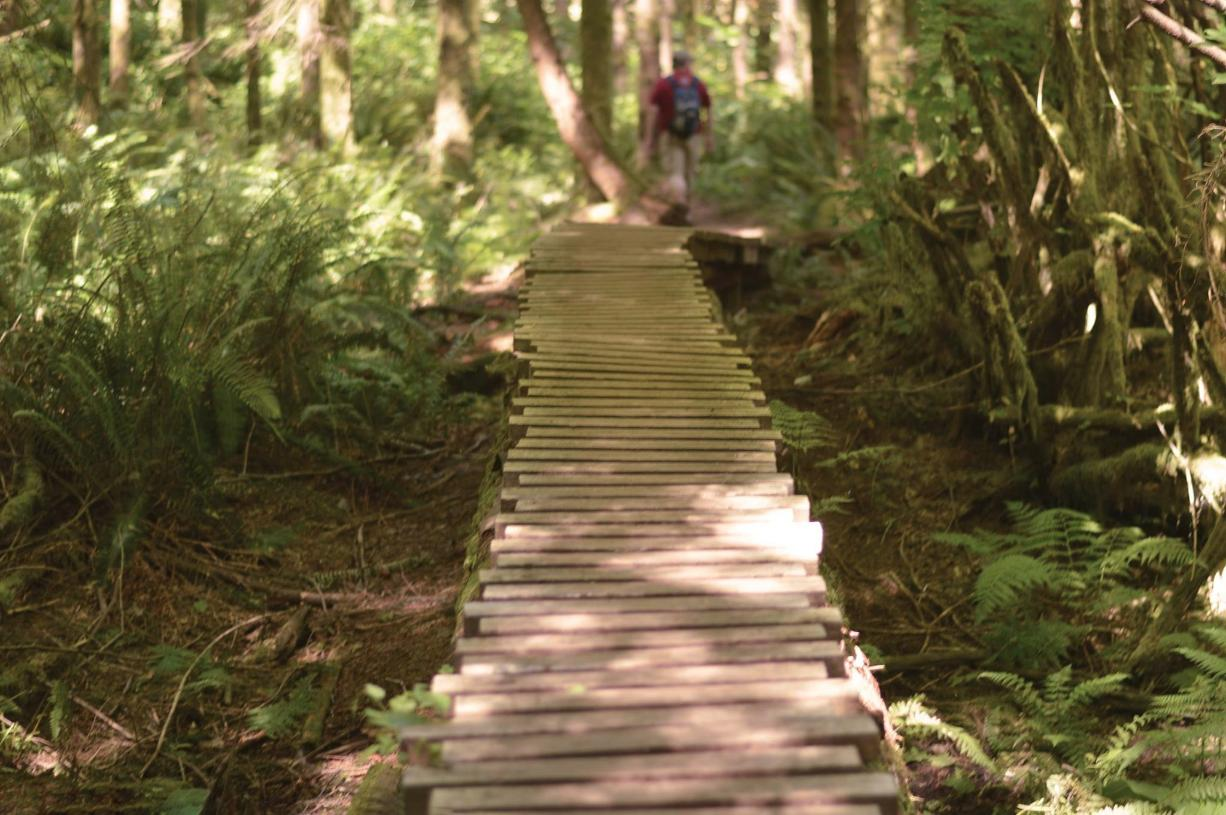 Hiking abounds nearby at The Black Diamond Open Space Park, Henry's Ridge Natural Area, and Flaming Geyser State Park