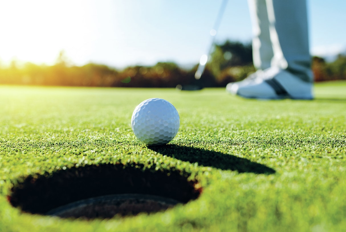 Take in a round of golf at the many nearby golf courses