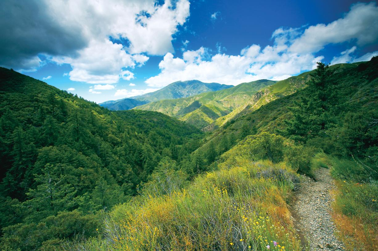 Hiking and walking trails nearby