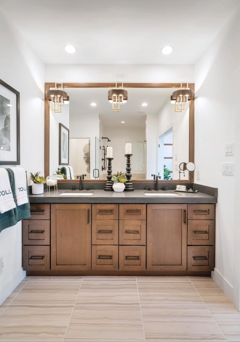 Primary bath with dual-sink vanity and large luxe shower