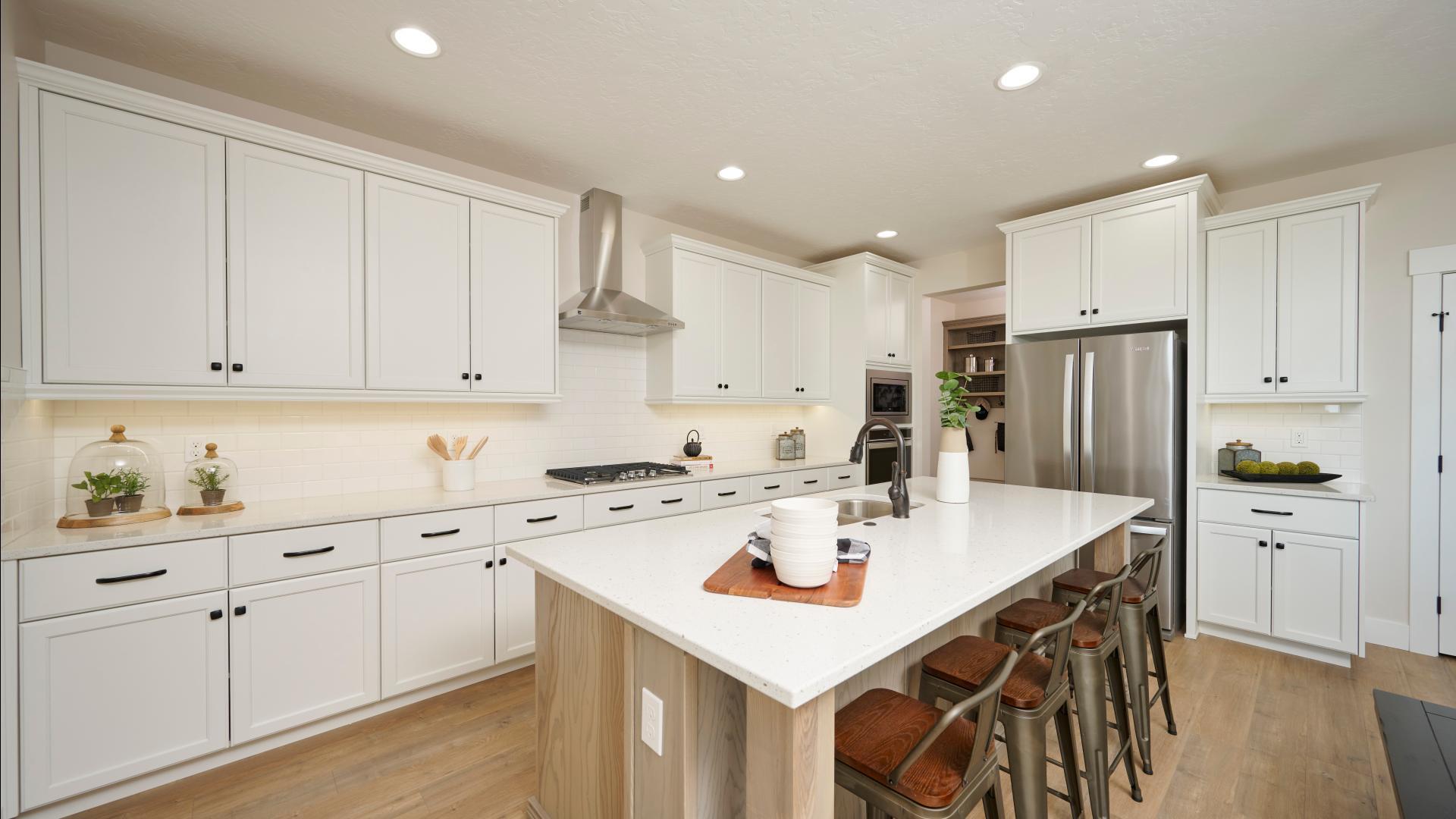 Large gourmet kitchens