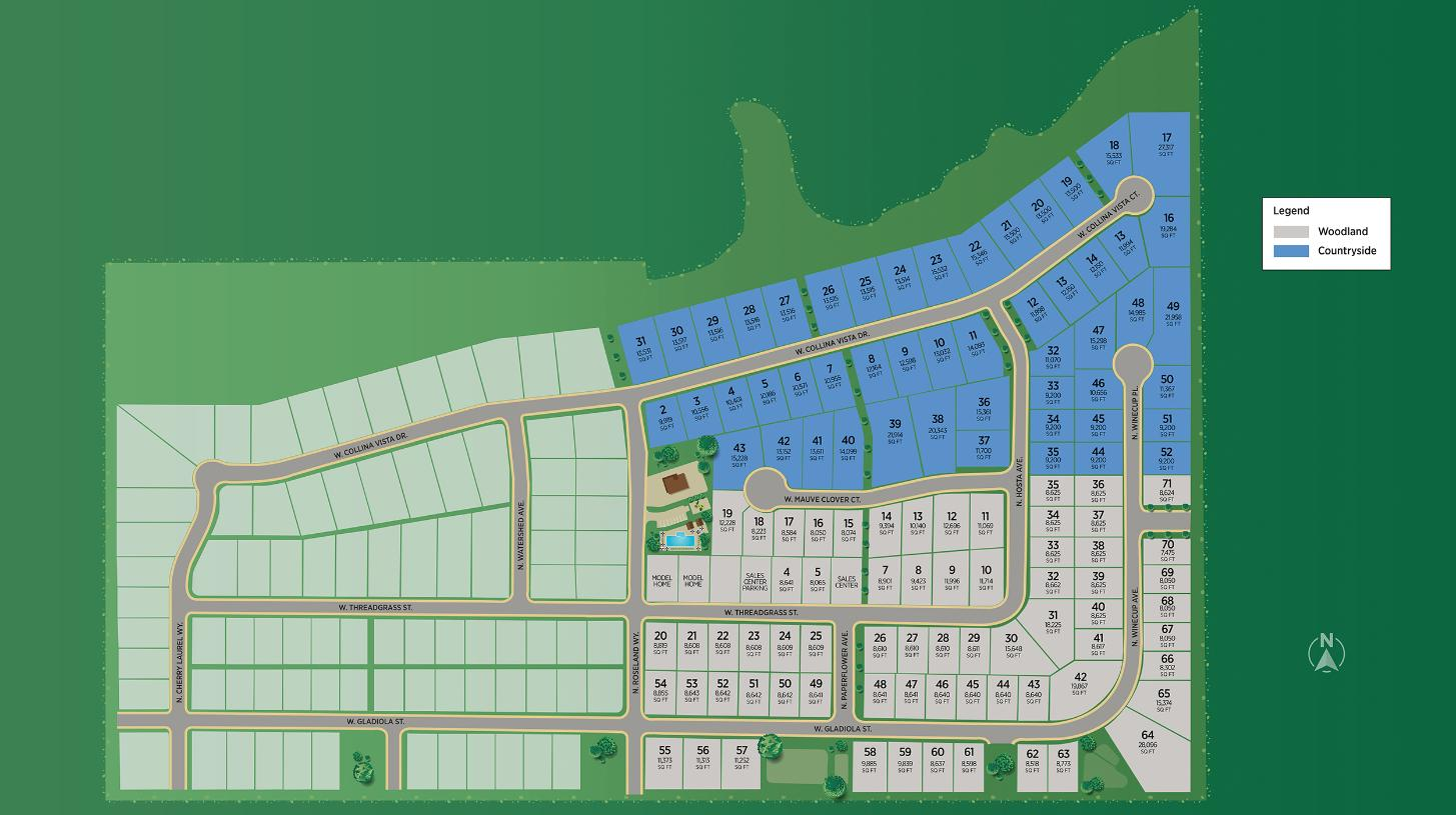 Toll Brothers at Collina Vista - Countryside Site Plan