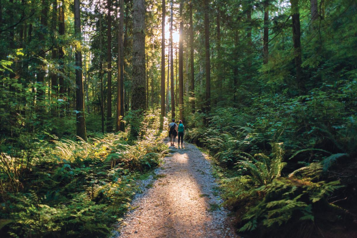 Easy access to the Issaquah Alps and numerous trail systems is a hiker's haven