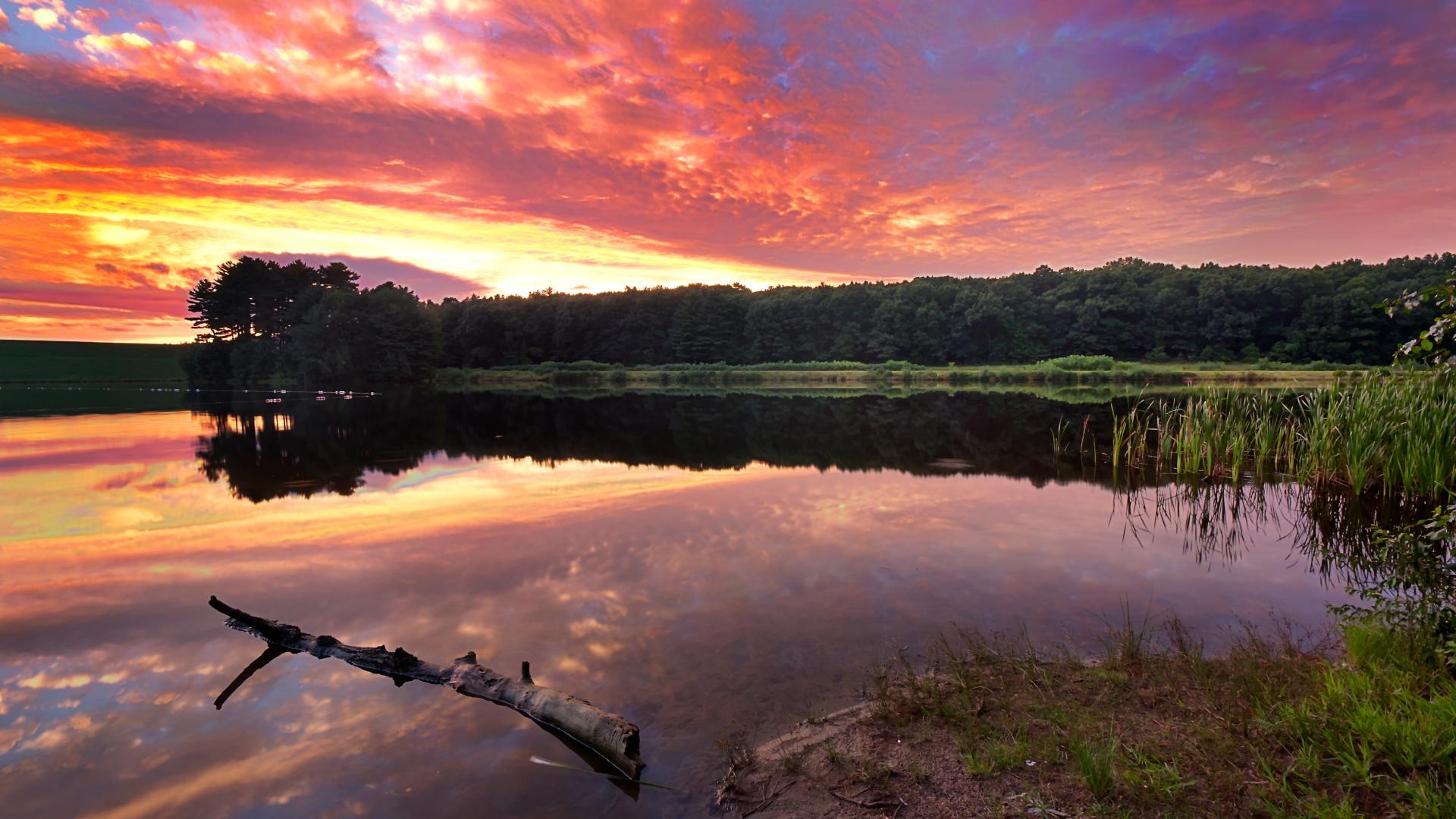 Community lakes throughout Riverton Pointe