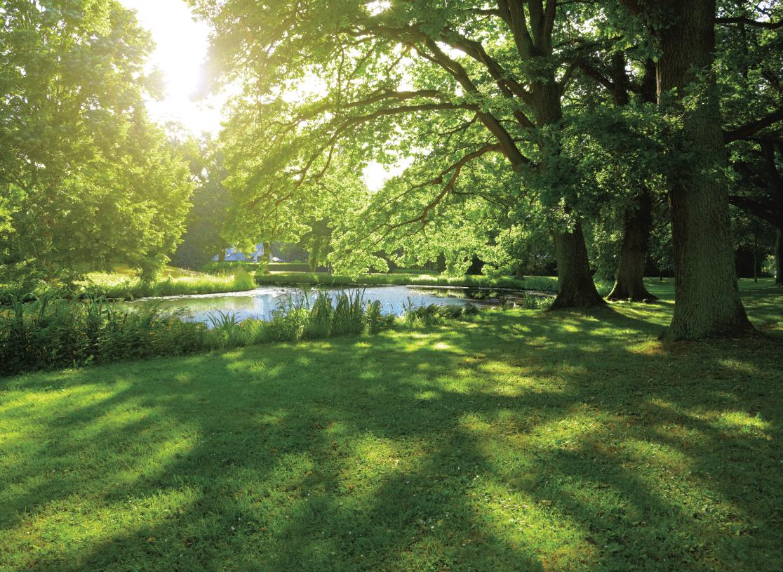 Surrounded by mature trees and green spaces