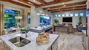 Toll Brothers - Saguaro Estates Photo